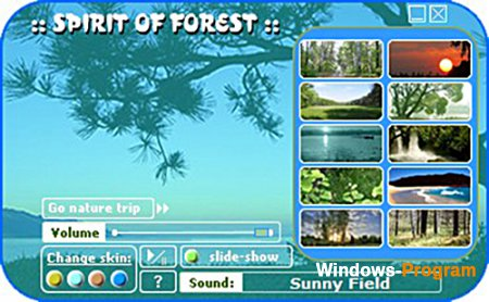 Spirit of Forest 3.2